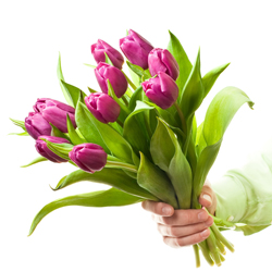 С Международным женским днем 8 марта!!!